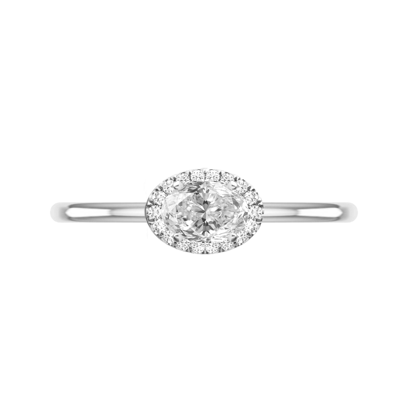 1 Carat Oval Diamond & Halo East West Solitaire Ring