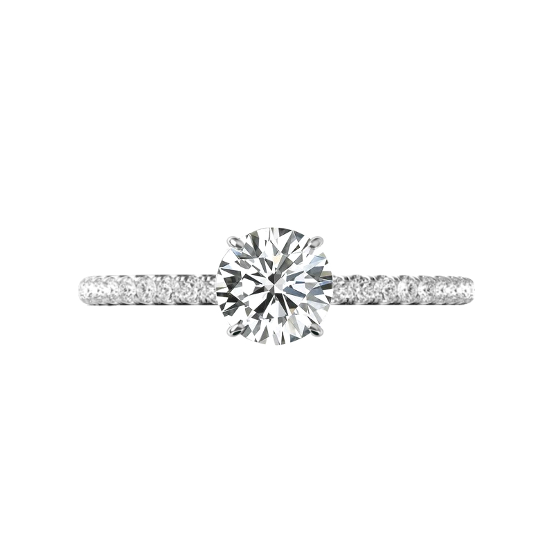 1.00 Carat Forever One Moissanite & Hidden Halo Engagement Ring