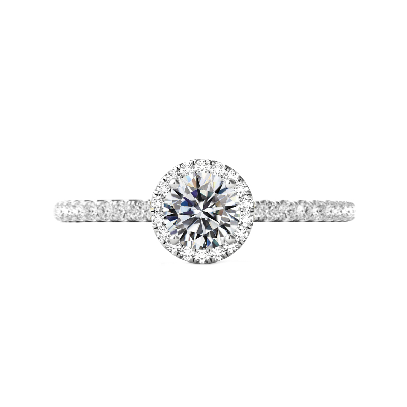 1 Carat Round Diamond & Halo Pave Profile Ring